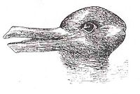 200px-Duck-Rabbit_illusion